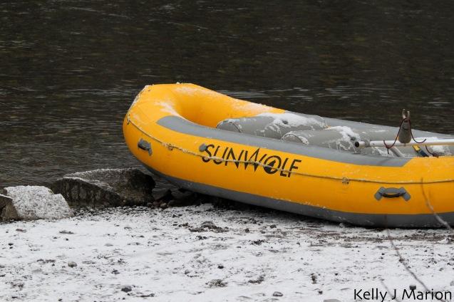 Sunwolf Eagle Viewing Raft Tour