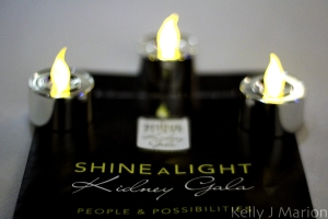 Shine A Light Kidney Gala