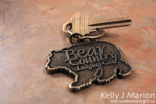 Bear Country Lodging