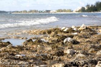 Grand Cayman, Seven Mile Beach