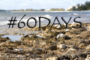 60Days in Paradise | Tobago's Island Connoisseur