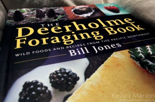 Deerholme Foraging Book